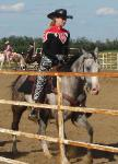 RDK Katonie - grey, part arab, pinto, gelding, jumping, for sale