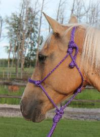 RDK correct way to tie rope halter