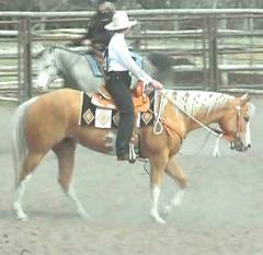 RDK April Gold 2003 palomino overo paint and pinto filly for sale